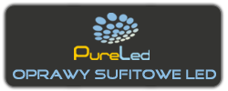 PURELED logo 1